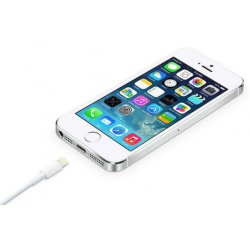 Apple lightning LAN and charge cable
